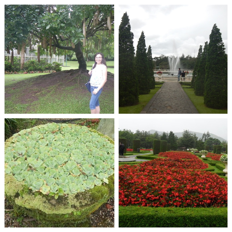taman bunga 2