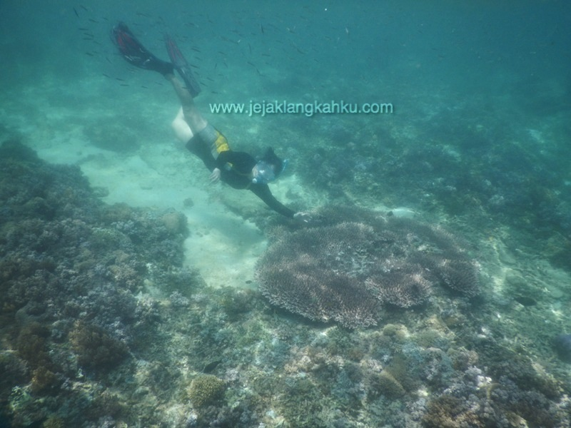 underwater gili trawangan 1-1