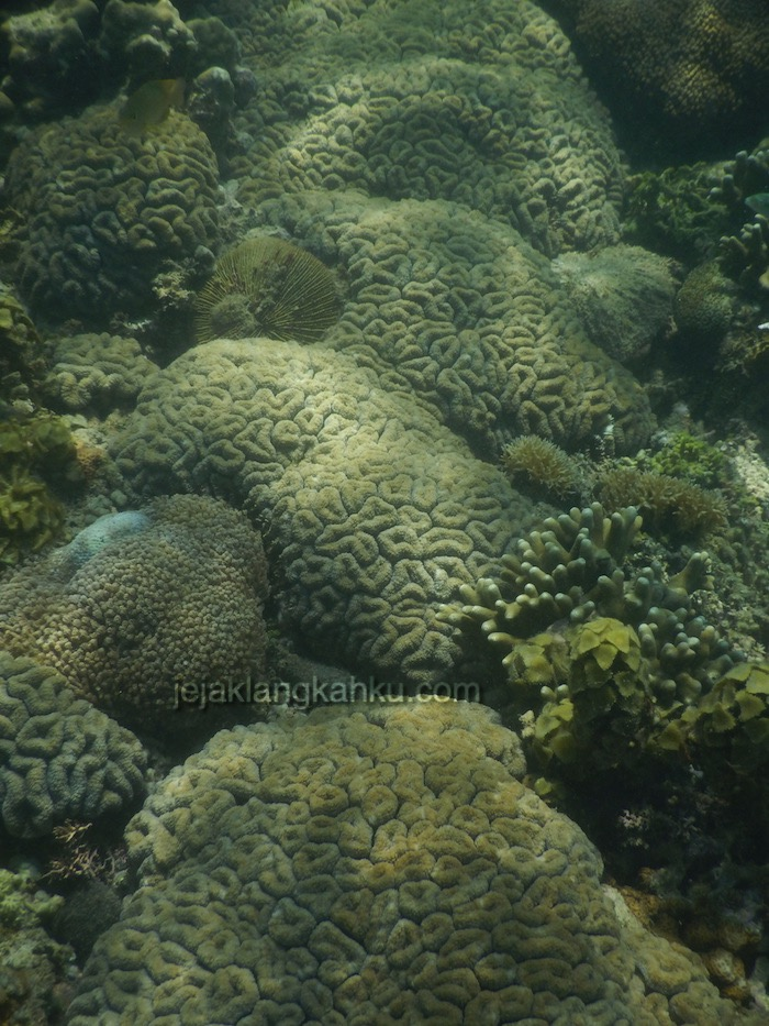 gili nanggu lombok 2