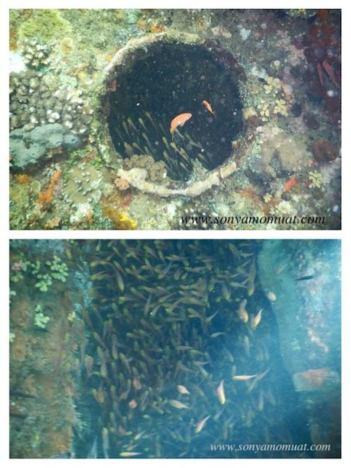 amed japanese shipwreck bali 4