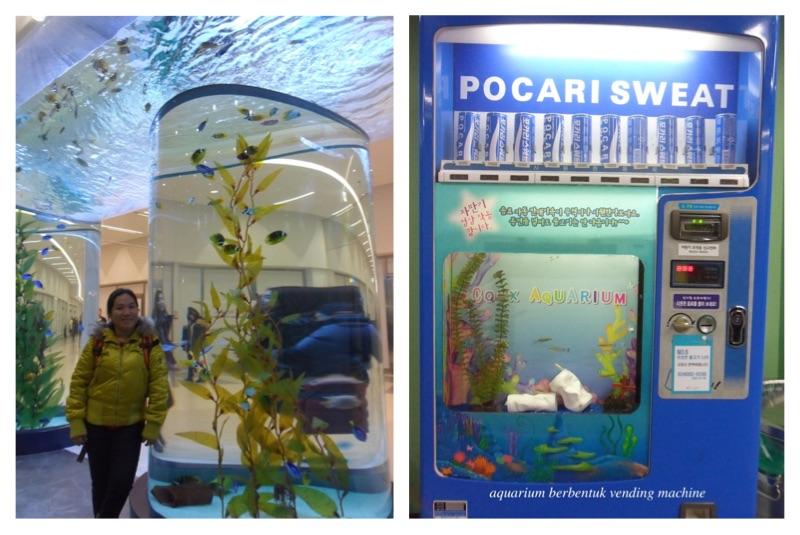 coex aquarium seoul 1