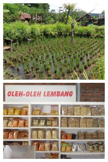 floating market lembang 7