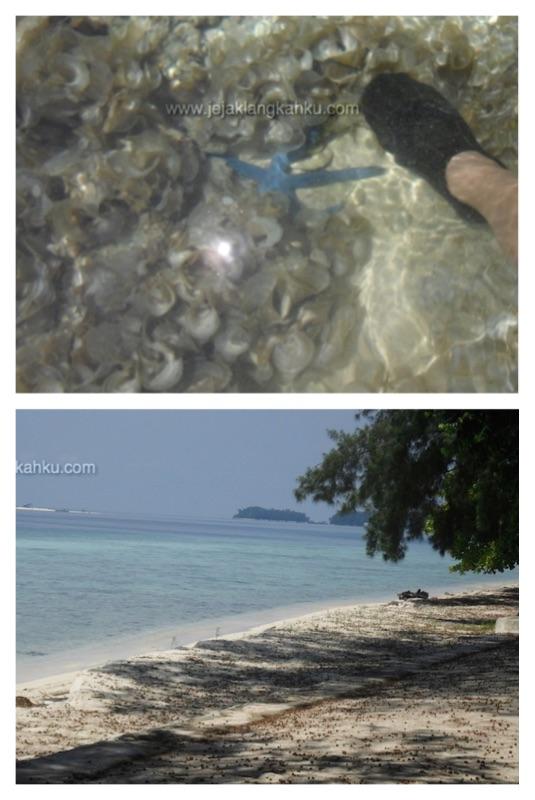 pulau panjang kepulauan seribu 3